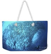 School Of Jacks And Divers At Liberty Weekender Tote Bag