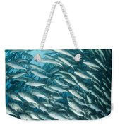 School Of Jacks, Indonesia Weekender Tote Bag