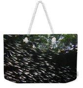 Schooling Fish Under Red Mangrove  Weekender Tote Bag