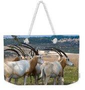Scimitar-horned Oryx Weekender Tote Bag