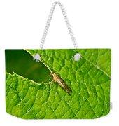 Scorpion Fly Nosing Around Weekender Tote Bag