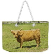 Scottish Highland Cow In Farm Field Maine Weekender Tote Bag