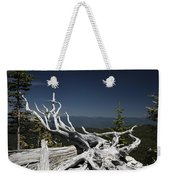 Sculpture By Mother Nature Weekender Tote Bag
