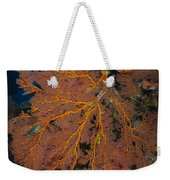 Sea Fan, Fiji Weekender Tote Bag