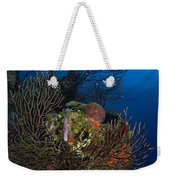Sea Fan Seascape, Belize Weekender Tote Bag