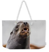 Sea Lion And Yellow Fangs Weekender Tote Bag