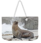 Sea Lion Monterey Weekender Tote Bag