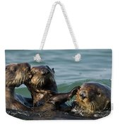 Sea Otter Enhydra Lutris Bachelor Male Weekender Tote Bag