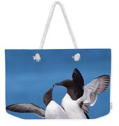 Seabird Love Weekender Tote Bag
