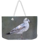 Seagull Weekender Tote Bag by Betty LaRue
