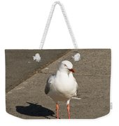 Seagull In The Summer Sun Weekender Tote Bag