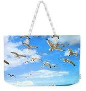 Seagulls At Worthing Sussex Weekender Tote Bag