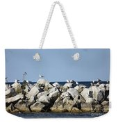 Seaguls On Boulders In Lake Erie Weekender Tote Bag