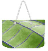Sem Of Dragonfly Wing Weekender Tote Bag