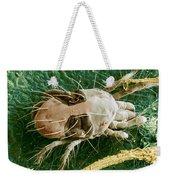 Sem Of Two-spotted Spider Mite Weekender Tote Bag