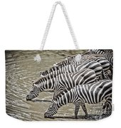 Several Thirsty Zebra Weekender Tote Bag