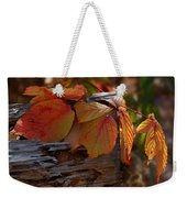 Shade In Fall Weekender Tote Bag