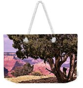 Shade Weekender Tote Bag by Tom Prendergast