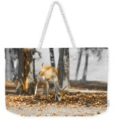 Shaded Grazing Weekender Tote Bag