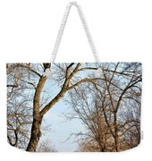 Shadow Cliffs Weekender Tote Bag