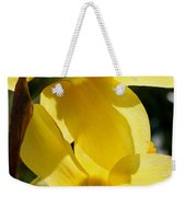 Shadow Play Weekender Tote Bag