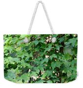Shadows Of The Sweet Gum Weekender Tote Bag