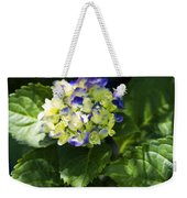 Shadowy Purple And White Emerging Hydrangea Weekender Tote Bag