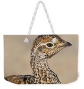 Sharp-tailed Grouse Weekender Tote Bag