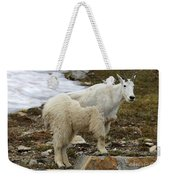 Shedding Mountain Goat Weekender Tote Bag