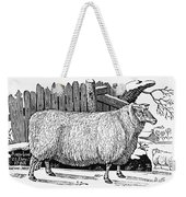 Sheep, 1788 Weekender Tote Bag