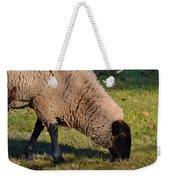 Sheep 3 Weekender Tote Bag