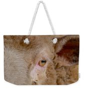 Sheep Close Up Weekender Tote Bag