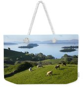 Sheep Grazing By Lough Corrib Cong Weekender Tote Bag
