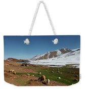 Sheep In The Atlas Mountains 02 Weekender Tote Bag