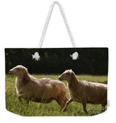 Sheep On The Move Weekender Tote Bag