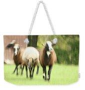 Sheep On The Run Weekender Tote Bag