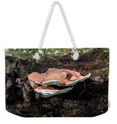 Shelf Mushrooms Weekender Tote Bag