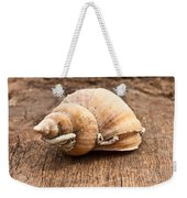 Shell Weekender Tote Bag by Tom Gowanlock