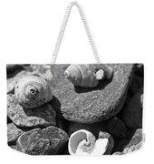 Shells I Weekender Tote Bag by David Rucker