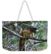 Shermans Fox Squirrel Weekender Tote Bag