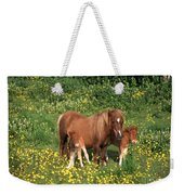 Shetland Pony With Foal Twins Weekender Tote Bag