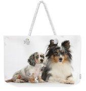 Shetland Sheepdog And Dachshund Puppy Weekender Tote Bag