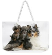 Shetland Sheepdog With Puppies Weekender Tote Bag