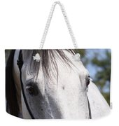 Show Horse At Mule Days Weekender Tote Bag