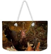 Shrimp With Legs And Claws Spread Wide Weekender Tote Bag