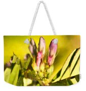 Sign Of Spring Weekender Tote Bag