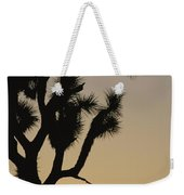 Silhouetted Joshua Tree In Antelope Weekender Tote Bag