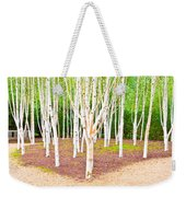 Silver Birch Trees Weekender Tote Bag