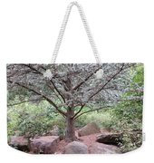 Silver On Trunk Weekender Tote Bag