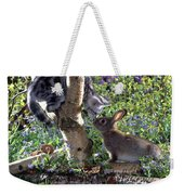 Silver Tabby And Wild Rabbit Weekender Tote Bag